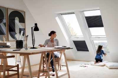 dakvensters velux